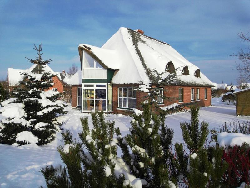 Reethaus im Winter Ferienwohnung Hass Tönning, Eiderstedt, nahe St. Peter-Ording